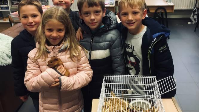 Kinderen gemeenteschool komen met huisdier naar school