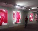 Gauro kreeg vijf jaar geleden een overzichtstentoonstelling in het nationaal museum in de Braziliaanse hoofdstad Brasilia.