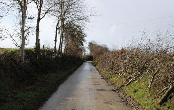 Snoeien in de holle wegen