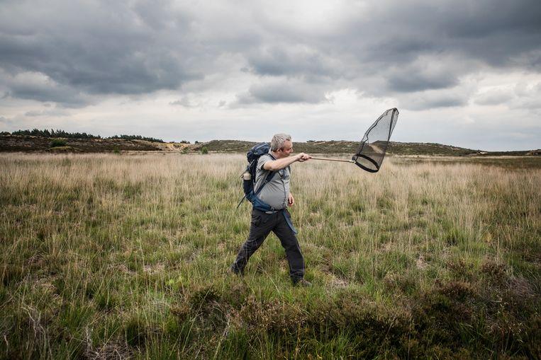 Op zoek naar het gentiaanblauwtje met Dirk Maes van het Instituut voor Natuur- en Bosonderzoek. Beeld Aurélie Geurts