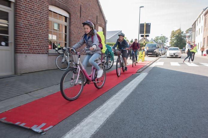 Onlangs kregen fietsende scholieren nog letterlijk de rode loper uitgerold.
