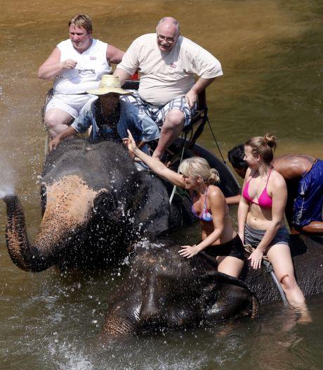 Petitie tegen reisorganisaties om ritjes op olifantenrug