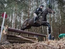 Gemeente Landerd en paardenbedrijf Schaijk met elkaar rond de tafel over trainingen