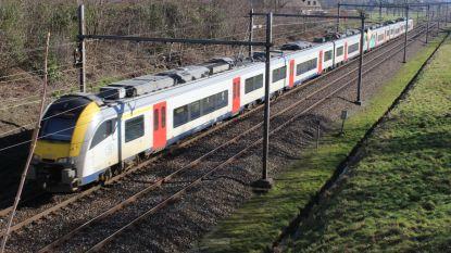Dit weekend geen treinen tussen Gent en Brugge: vervangbussen aan stations Aalter, Maria-Aalter, Bellem, Hansbeke en Landegem