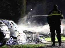 Schipper ontdekt autobranden Nieuwegein, politie onderzoekt opzet