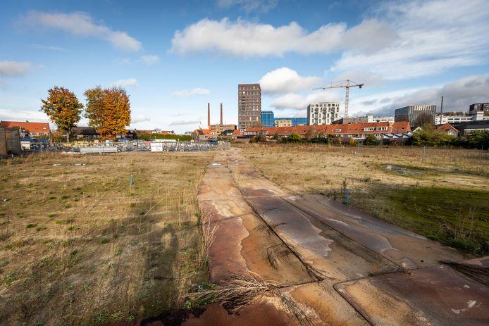 Het terrein van voormalig Eindhoven Druk aan de Cederlaan. Volgend jaar worden hier woningen gebouwd.