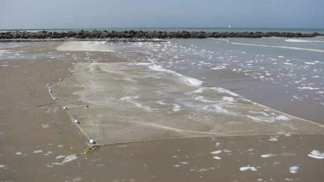 """Vergunning om te strandvissen voortaan gratis: """"Het kost meer om het bedrag te innen dan dat het opbrengt"""""""