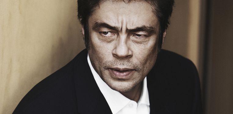 Del Toro staat bekend om zijn duistere blik. 'Daarvoor moet ik mijn ouders bedanken.' Beeld GETTY