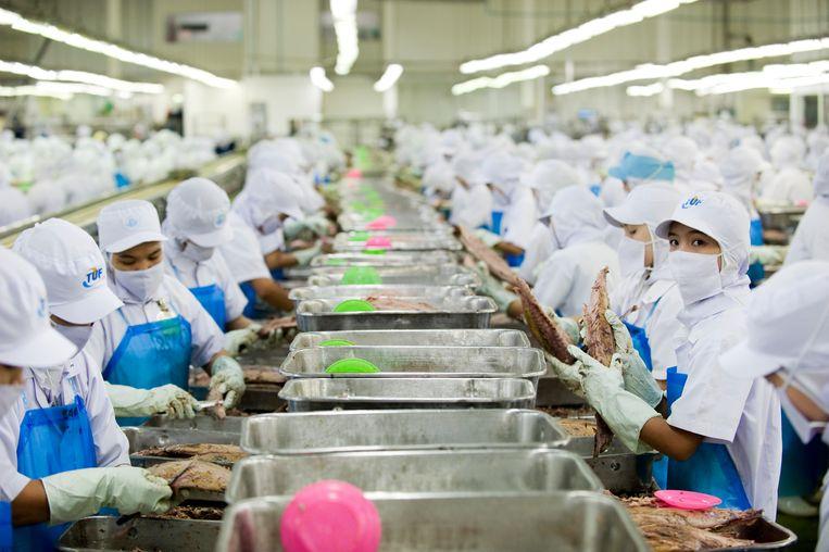 Arbeiders aan de lopende band in Samut Sakorn, Thailand, bij een bedrijf dat vis in blik verpakt. Beeld LightRocket via Getty Images