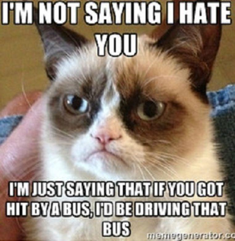 Grumpy Cat. Beeld memegenerator.com
