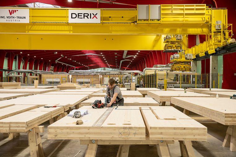 Bij de firma Derix worden in een gloednieuwe hal met dito apparatuur houten planken verlijmd tot meerlaags hout (CLT), dat gebruikt wordt in de huizenbouw. Beeld Harry Cock / de Volkskrant