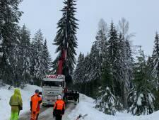 Enorme kerstboom gekapt in Noorwegen en onderweg naar Gouda