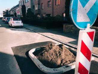 """Buurtbewoners August Marcelstraat die zich verzetten tegen de aanplanting van twee bomen: """"Schepen De Gucht vertelt halve waarheden"""""""