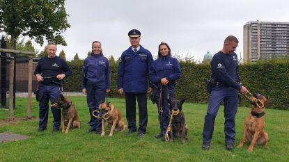 Ook de politie verwent haar viervoeters op Werelddierendag
