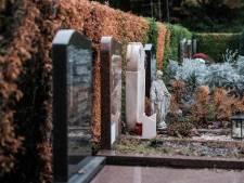 Droogte funest voor haag op Duivense begraafplaats
