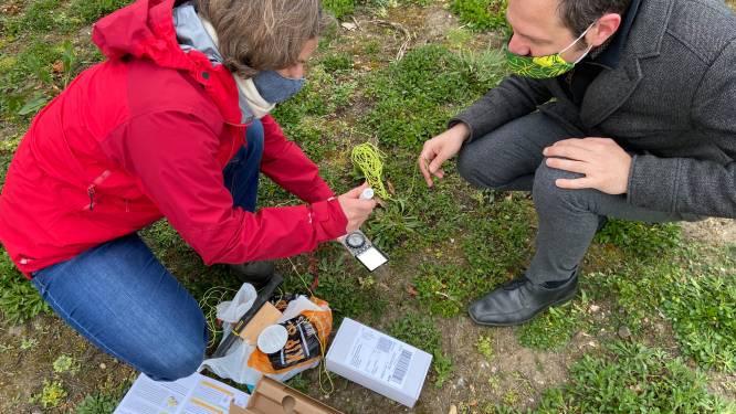 Hasselt plaatst sensoren om droogte in tuinen en parken te meten