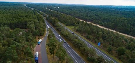 Succes voor Noord-Veluwe in strijd tegen kaalslag, want Rijkswaterstaat plant tóch nieuwe bomen langs A28