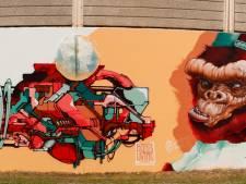 Graffiti-artiesten leven zich uit op lange muur PSV-laan in Eindhoven