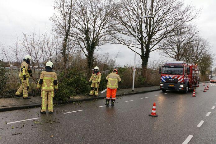 Een omgewaaide boom zorgde voor vertraging in Goor