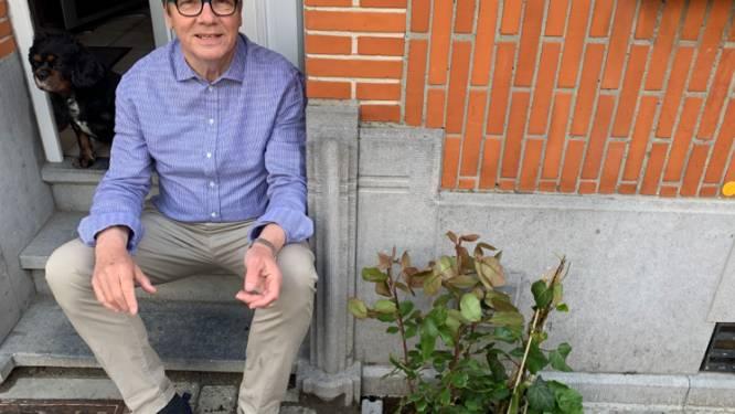 Geveltuintjes fleuren Geraardsbergs stadsbeeld op