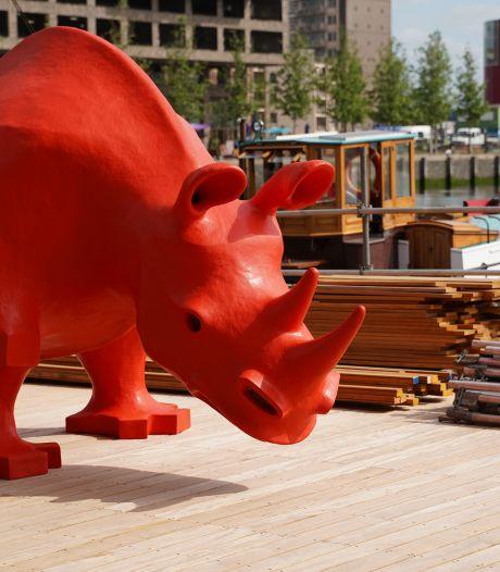 Ja, dat zie je goed! Een felgekleurde neushoorn staat opeens bij de Rijnhaven: 'Doorzetten loont'