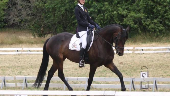 Amazone Bo (17) wint paardentriatlon in Waregem en droomt stiekem van selectie voor EK Juniors