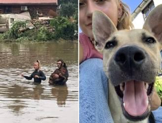 Hartverwarmend: Béline (21) gaf al 300 honden, katten en andere dieren nieuwe thuis na overstromingen