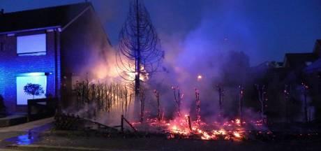 Coniferenhaag van 30 meter gaat in vlammen op in Ulft