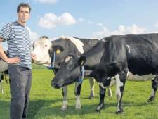 Bioboer vaker in overtreding door snel groeiende markt