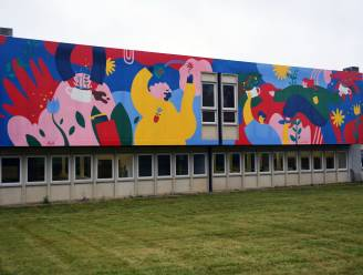 """Unieke luchtzuiverende muurschildering van 160 vierkante meter aan Geogarden: """"Elimineert jaarlijks de vervuiling van 12.490 auto's"""""""