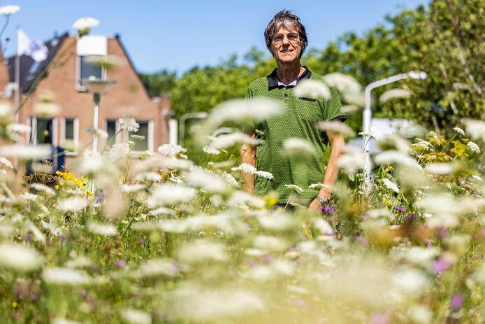 Aad van Uffelen in een bloeiende berm, waar ook onkruid groeit. Het is goed voor de biodiversiteit en goedkoper in het onderhoud, meent de vrijwilliger van Natuurlijk Delfland.