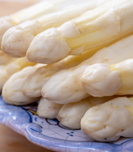 Eigen asperge-lunch