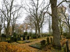 Met rollator of rolstoel naar de begraafplaats valt niet mee: Waalwijk pakt looppaden aan
