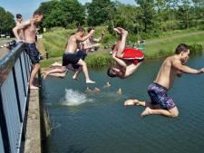 Zwemmen in de Bernisse afgeraden vanwege blauwalg