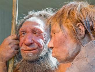 Geen skeletresten, maar wat uitwerpselen en bloed: minuscule sporen van neanderthaler-DNA gevonden in bodemmateriaal van oude grotten