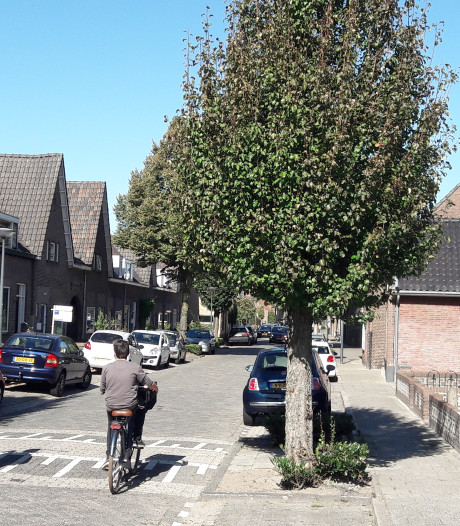 Provincie doet niet moeilijk over ingekorte snelfietsroute Waalwijk