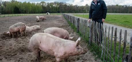 Voor 500 monden komt het eten in Alphen letterlijk van heel dichtbij: 'En dat smaakt echt anders'