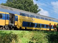 Treinverkeer tussen Ede-Wageningen en Driebergen weer op gang na urenlange stremming