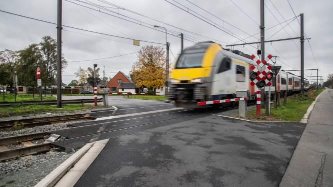 Treinverkeer tussen Brugge en Aalter stilgelegd omdat boom op treinsporen dreigt te vallen