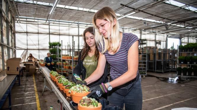 Imago arbeidsmigranten klopt niet: Lukasz, Claudia en Aleksandra balen van slechte beeldvorming