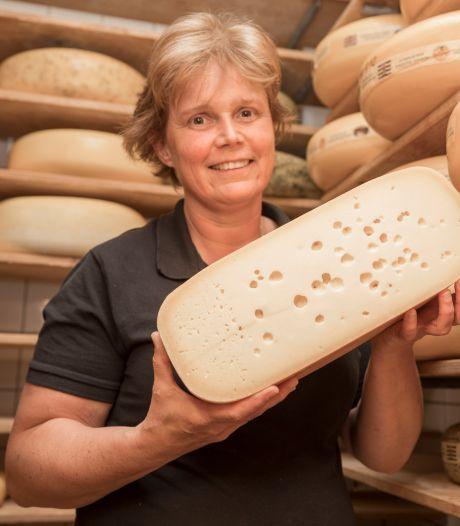 Melkprijs piekt, maar veehouder pakt geen winst: 'Ook de kosten rijzen de pan uit'