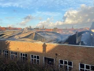 """Heel wat roetdeeltjes in tuinen na brand: """"Maar aangifte doen niet nodig"""""""