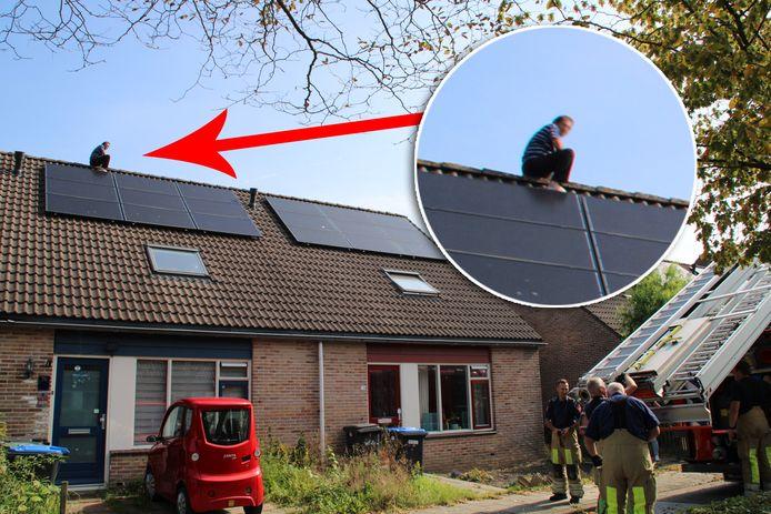 De man zit op het dak van zijn huis nadat hij de parkiet wilde redden. Het vogeltje was echter gevlogen waarna de man zelf niet meer naar beneden durfde.