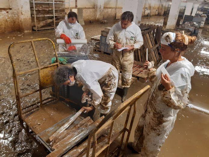 Les agents de l'AWaP et les bénévoles ont entamé une véritable course contre la montre et contre les éléments pour sauver les biens archéologiques entreposés dans les caves du Centre de conservation et d'étude de Saint-Servais.