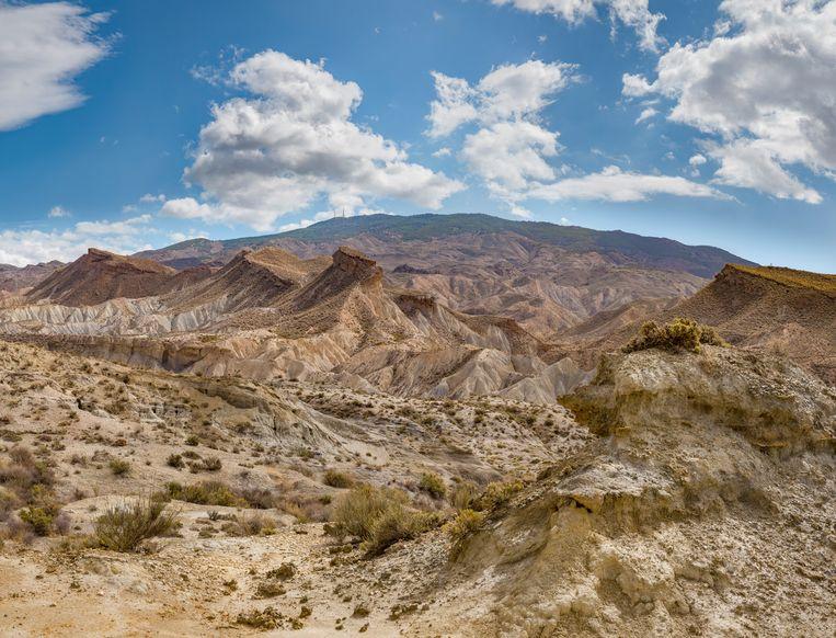 De Tabernaswoestijn Beeld Getty