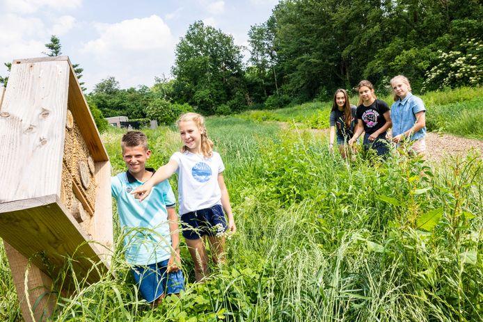 Dax en Fleur (op de voorgrond) en Roos-Anne, Suus en Evelien (v.l.n.r.) van de Kinderraad van Hilvarenbeek bedachten een Toekomsttuin. Een plek voor bijen en andere insecten, waar mensen elkaar kunnen ontmoeten en genieten van de natuur.
