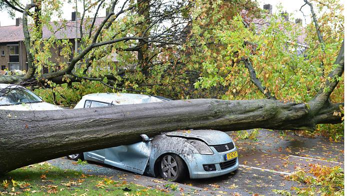 In enkele straten in Tilburg-West richtte de storm een grote ravage aan