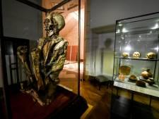 Pairi Daiza et les musées royaux prétendent tous deux détenir Rascar Capac, la momie de Tintin