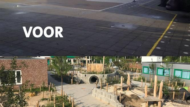 Van saaie betonvlakte tot avontuurlijkste schoolterrein van het land: Basisschool Sint-Paulus Kortrijk trotse eigenaar van eerste klimaatspeelplaats
