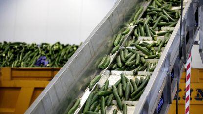 Besmette diepvriesgroenten eisten al negen levens in Europa: Belgische fabriek volledig stilgelegd in Hongarije